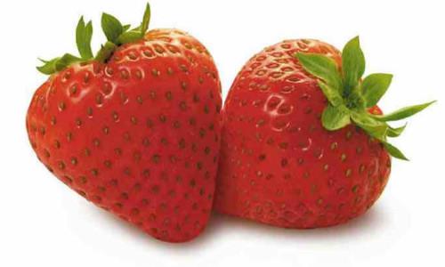 fruit_52