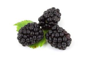 Blackberries have one of the highest levels of antioxidants of all the fruits