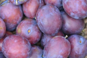Plums are the perfect high antioxidant snack food