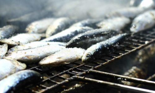 high_purine_food_09_sardines