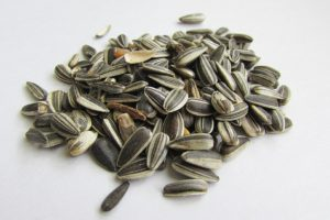 Sunflower seeds can be consumed in limited amounts